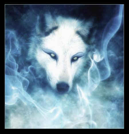 1202422778_wolfeyes