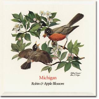 Michigan_card
