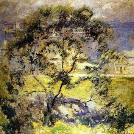 Wild_Cherry_Tree (2)