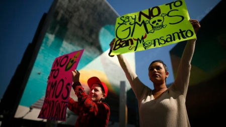 """People hold signs during one of many worldwide """"March Against Monsanto"""" protests against GMOs and agro-chemicals, in Los Angeles"""